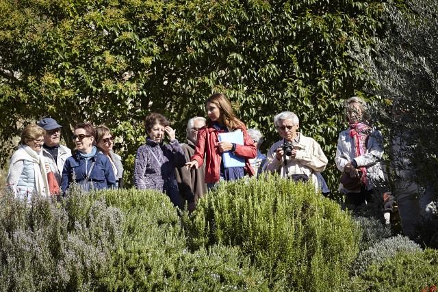 Visits, excursions, workshops