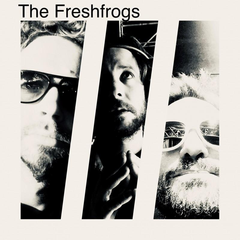 The Freshfrogs